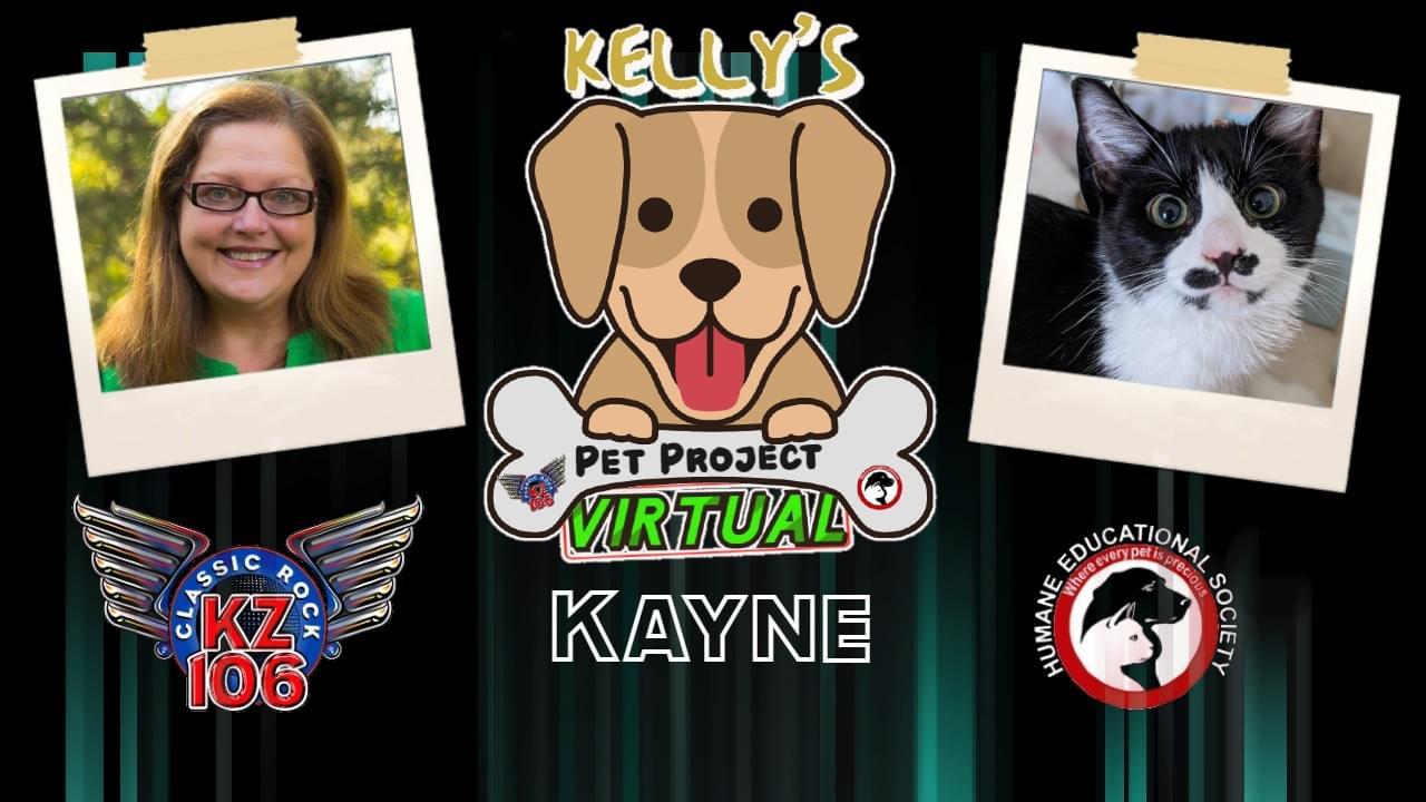 KELLY'S PET PROJECT: KAYNE