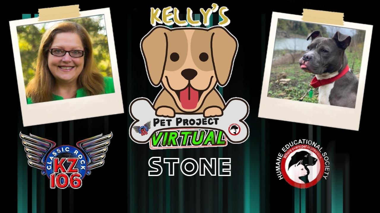 Kelly's Pet Project: Stone