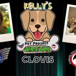 KELLY'S PET PROJECT: CLOVIS