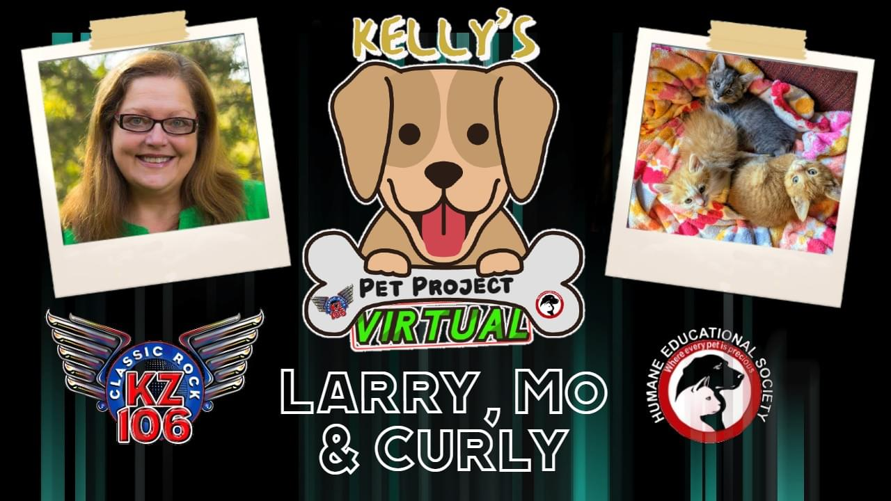 KELLY'S PET PROJECT: Larry, Mo & Curly