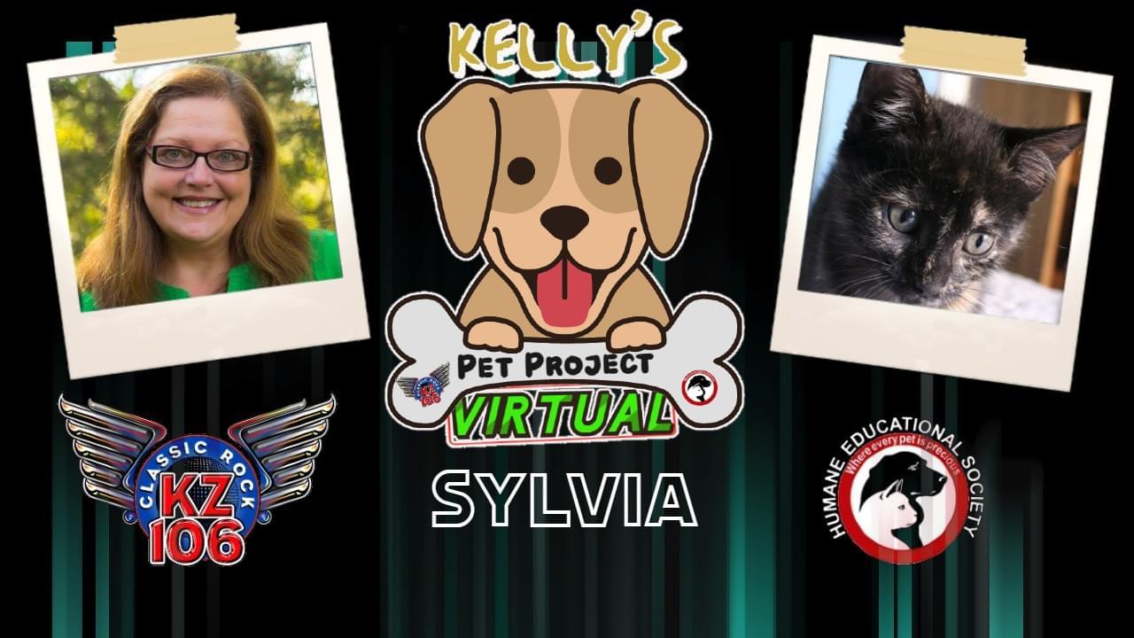 KELLY'S PET PROJECT: SYLVIA
