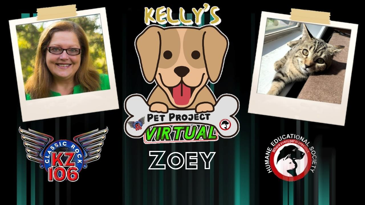 KELLY'S PET PROJECT: ZOEY