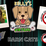 KELLY'S PET PROJECT: BARN CATS