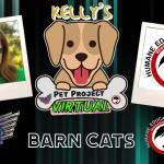 KELLY'S PET PROJECT: BARN CATS