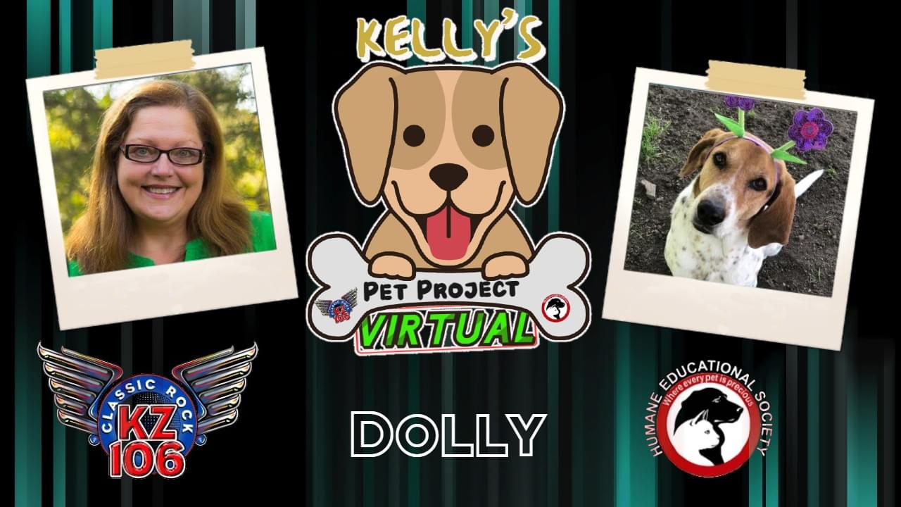 KELLY'S PET PROJECT: Dolly
