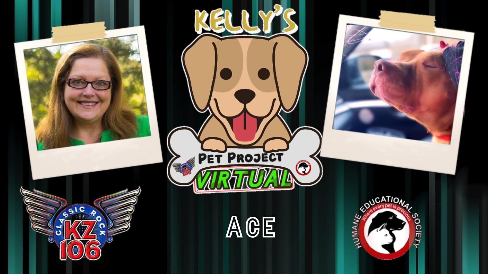 Kelly's Pet Project: Ace