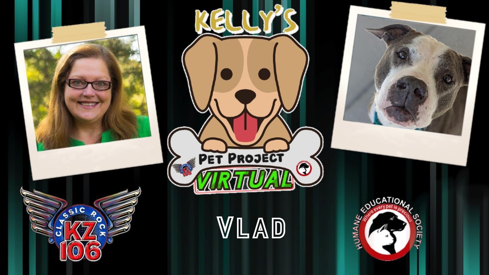 Kelly's Pet Project: Vlad