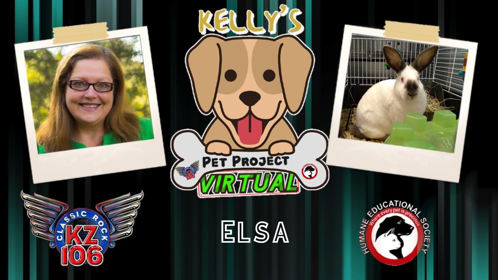 Kelly's Pet Project: Elsa