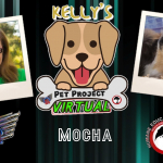 Kelly's Pet Project: Mocha