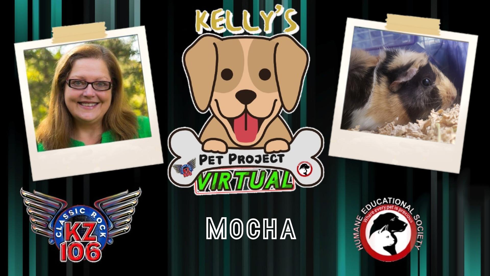 Kelly's Pet Project: Mocha
