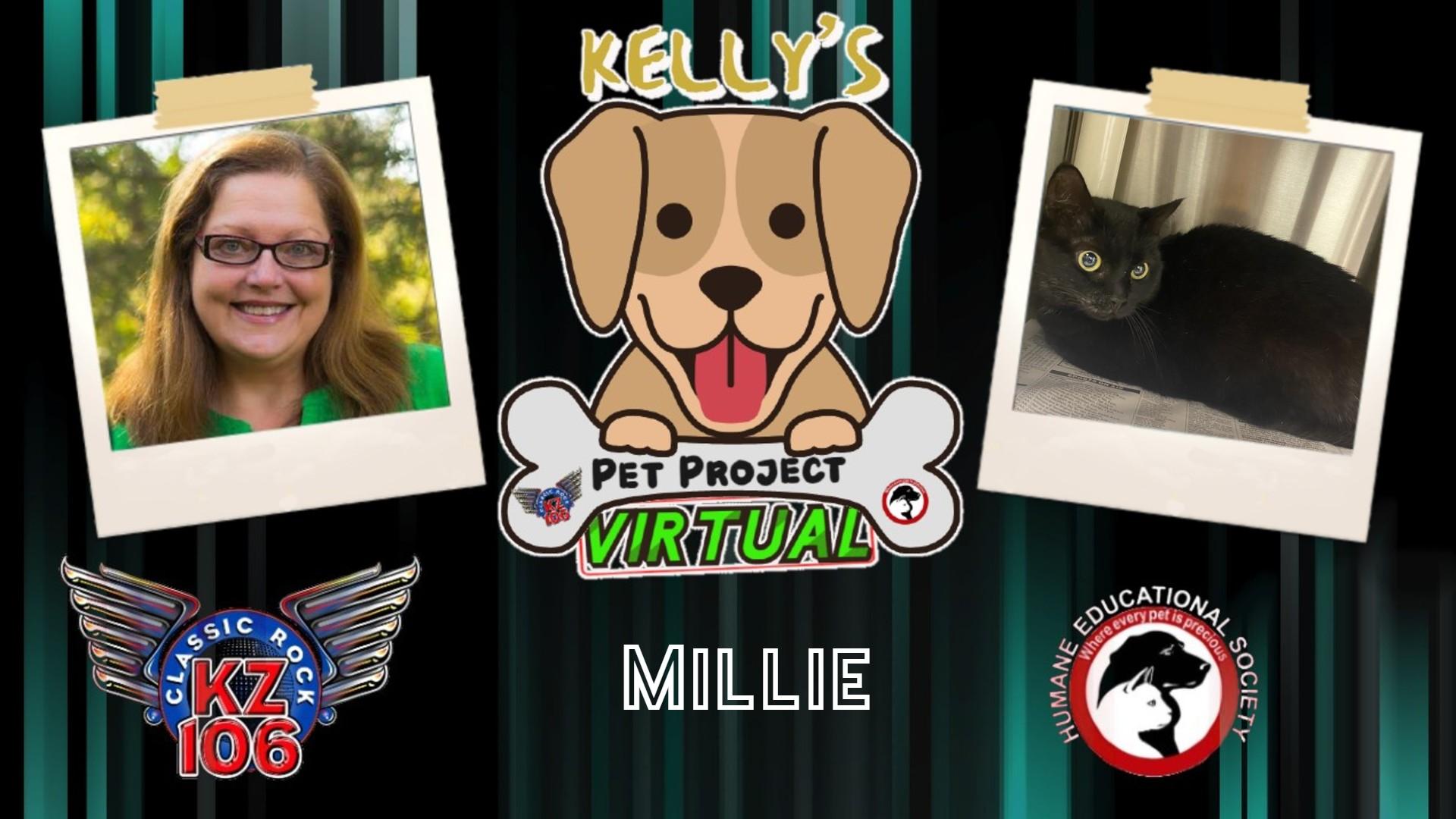 Kelly's Pet Project: Millie