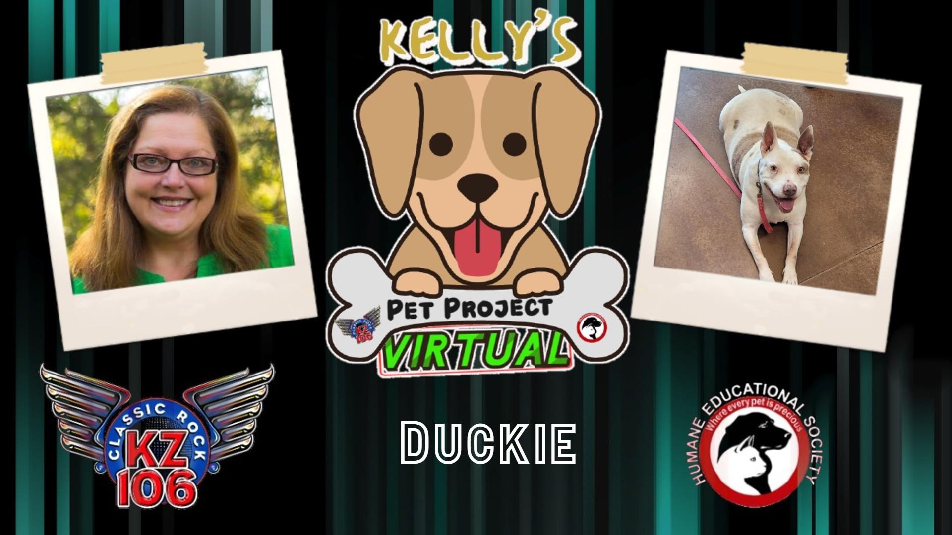 Kelly's Pet Project: Duckie