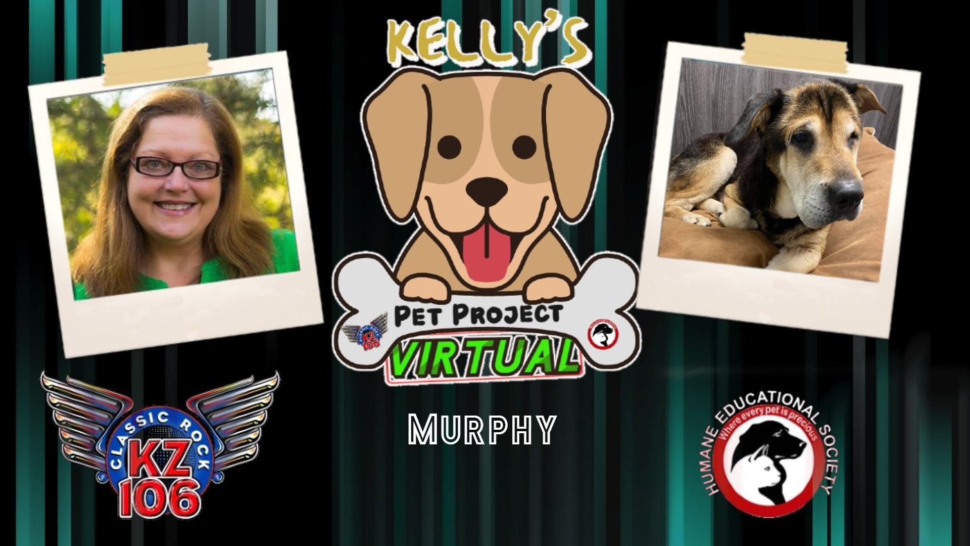 Kelly's Pet Project: Murphy