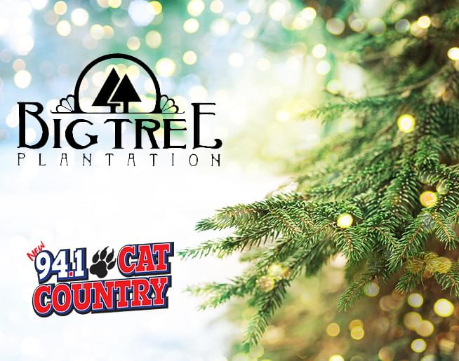 Win a Big Tree Plantation Gift Card!