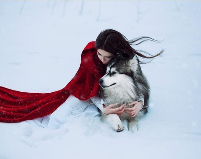 Amanda Becomes a Wolf