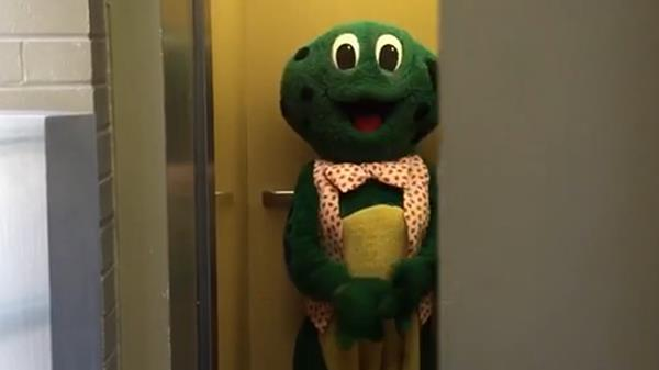 Frog In An Elevator