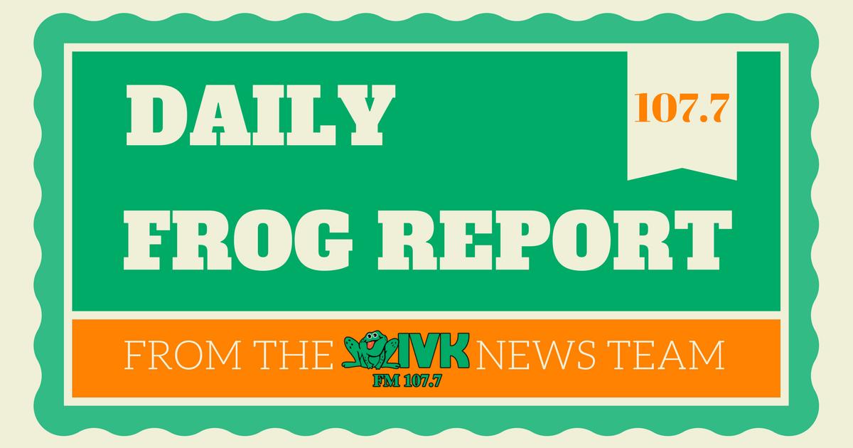 Frog Report