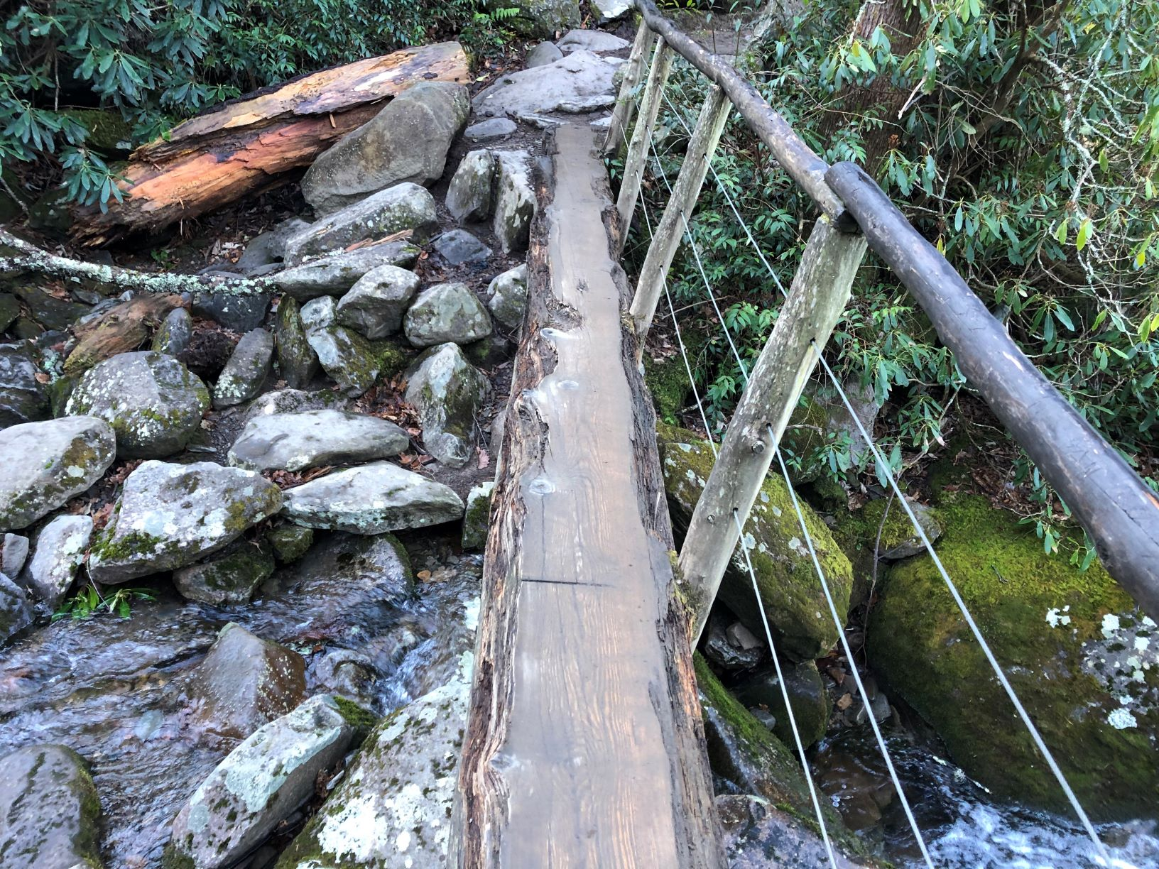 Rainbow Falls Foot Log Needed Repair (2)