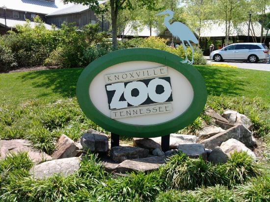 Zoo Knoxville $5 Days