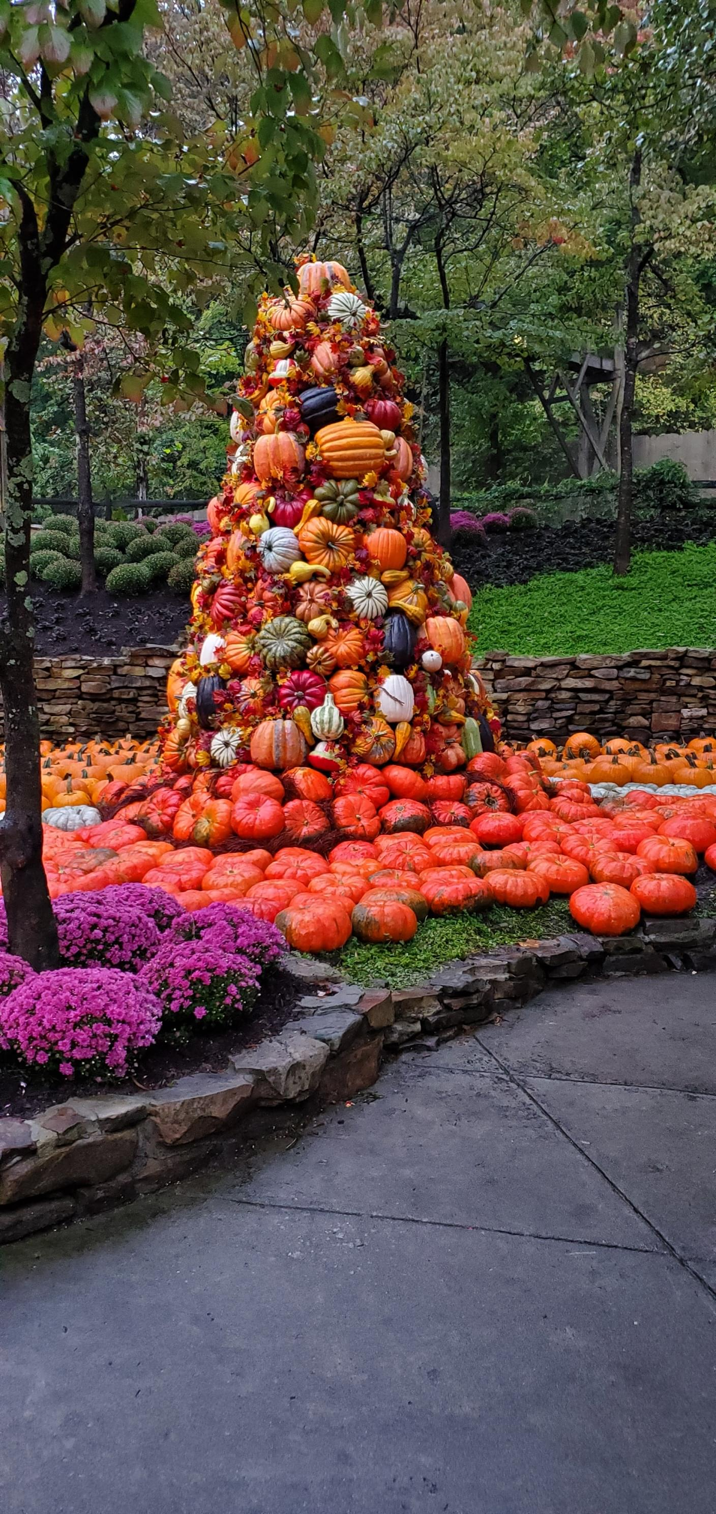 Dollywood's Fall Harvest Festival Offering Many New Additions This Year