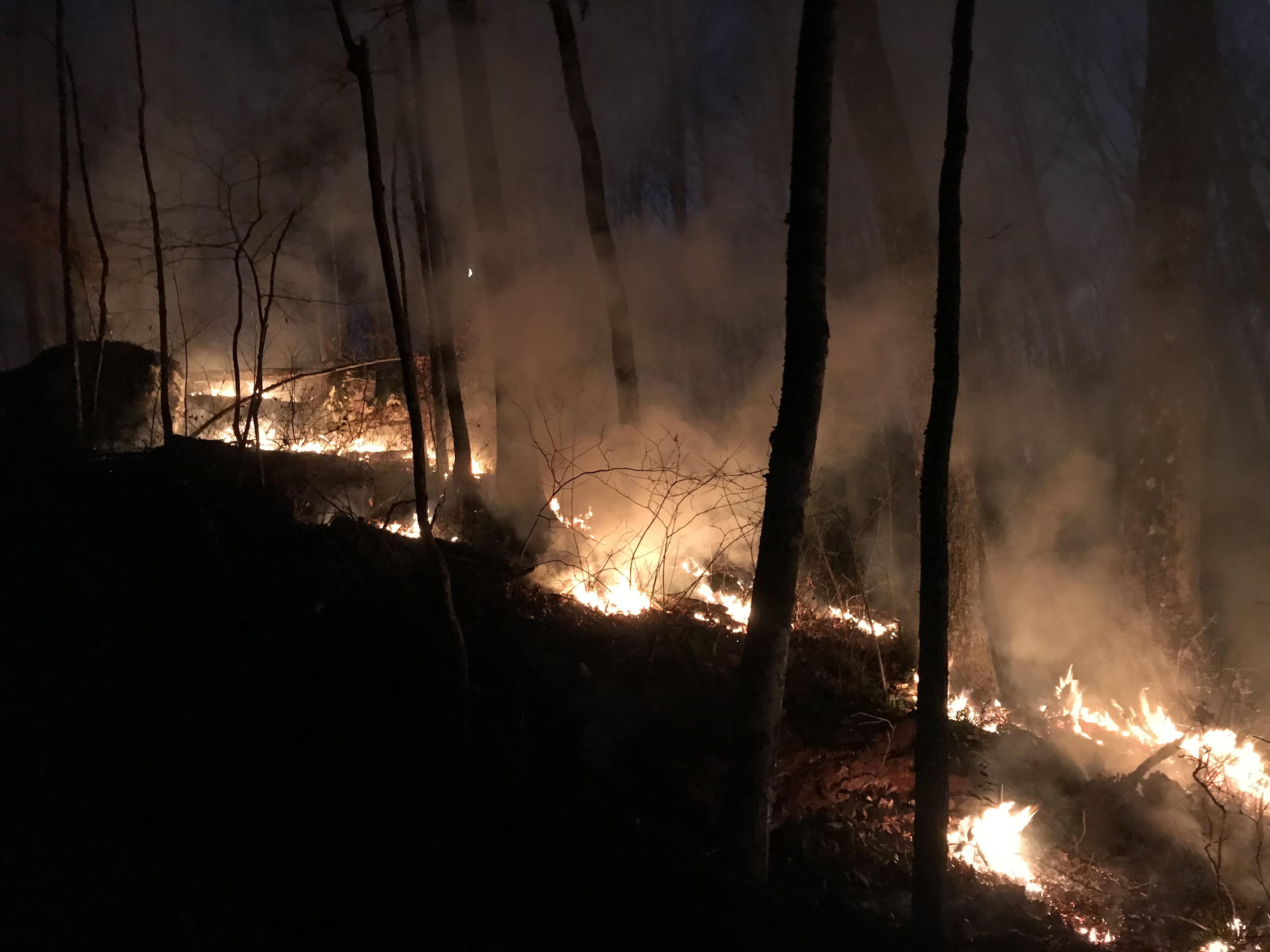 Wildfire in Fentress County 95% Contained