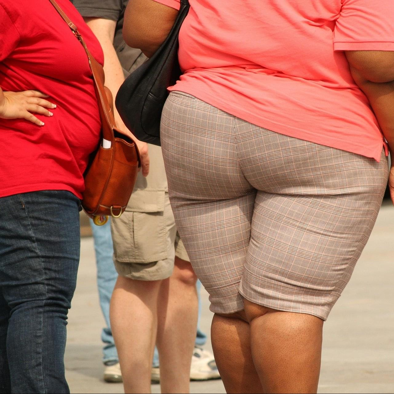 """Scientist can now """"disable"""" the obesity gene!"""