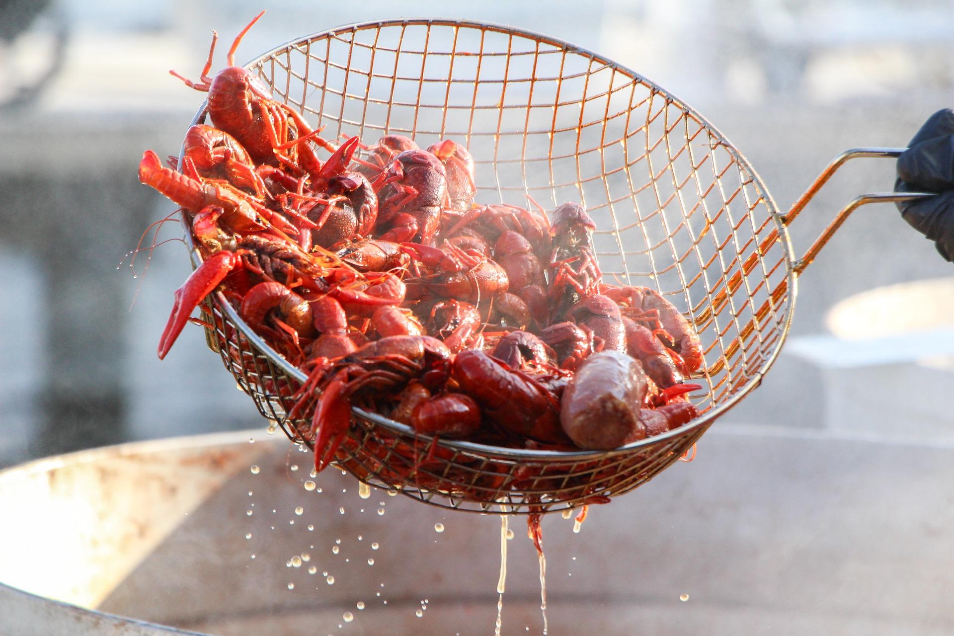 Crawfish Festival is BACK – in Chalmette!