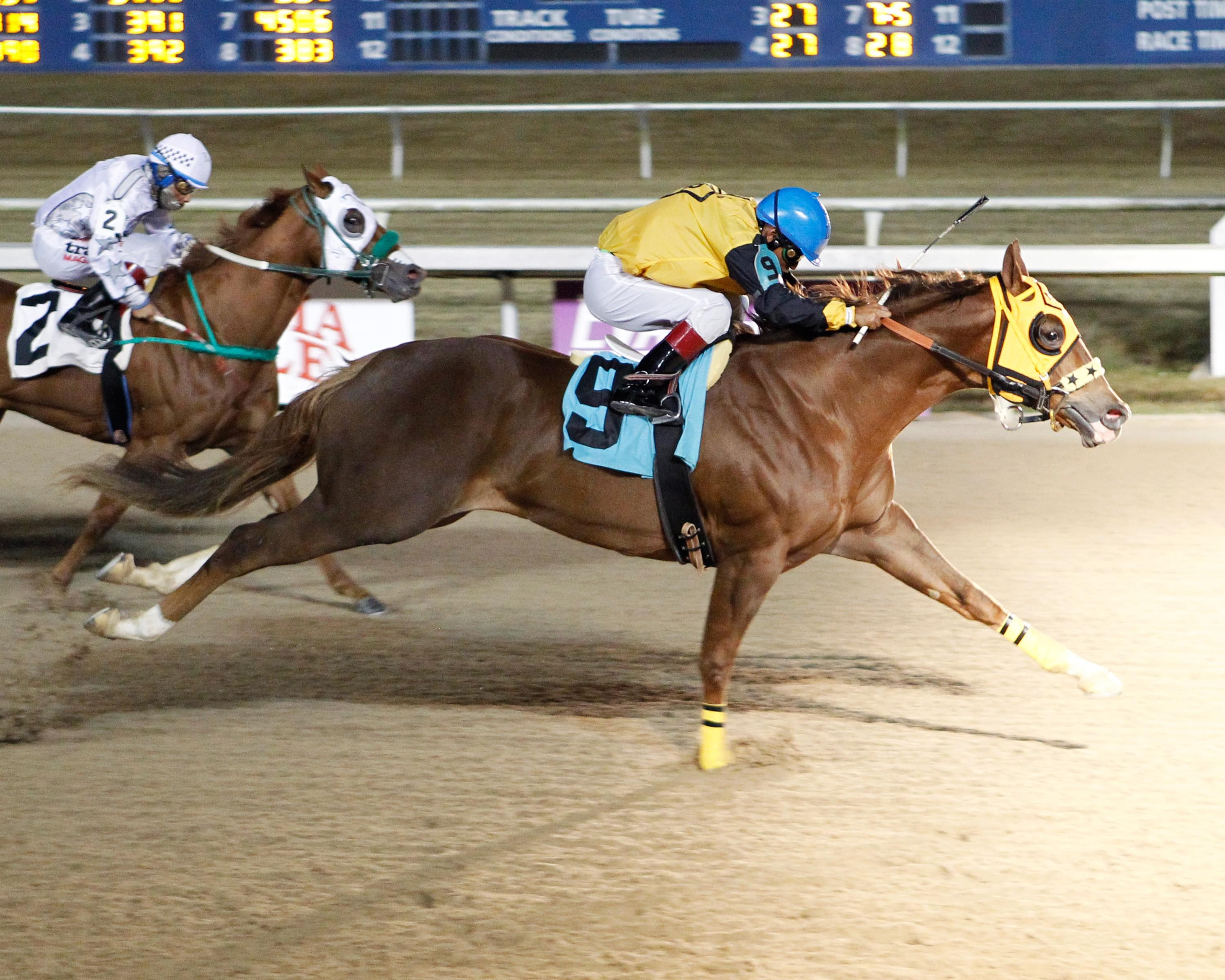 LQHBA Louisiana Million happens this Saturday night at Evangeline Downs!