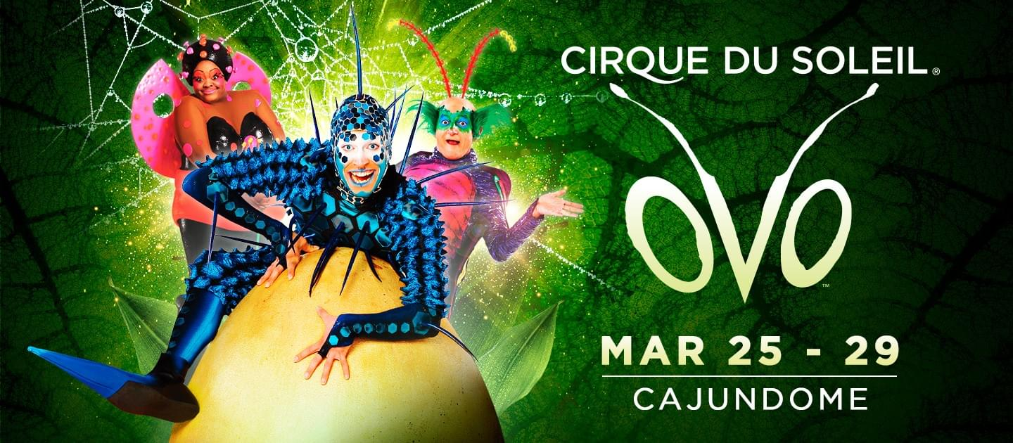 You don't want to miss the spectacle that is Cirque du Soleil OVO!