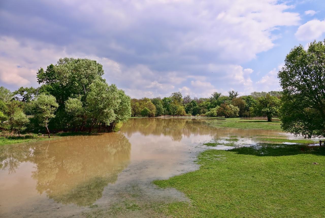 FEMA's Flood Insurance Grace Period Extension