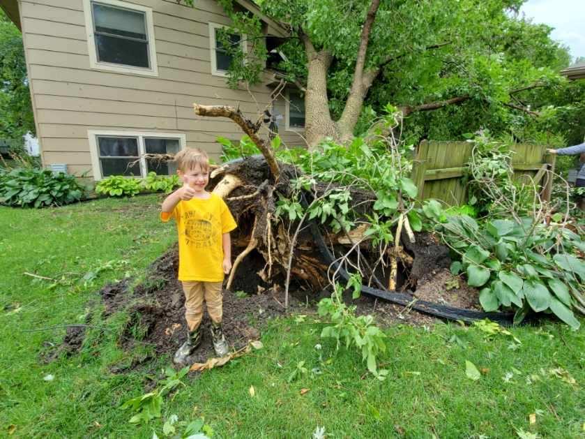 B-sox's Storm Damage