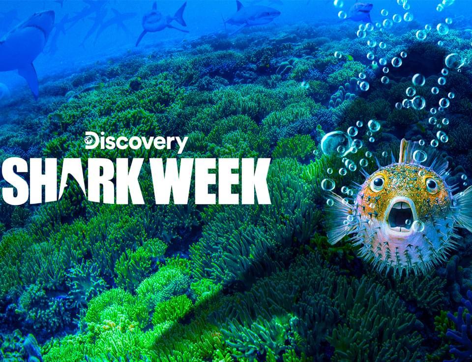 Lindsay at AT&T Go for Shark Week