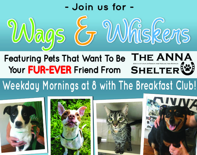 Wags and Whiskers with the ANNA Shelter!