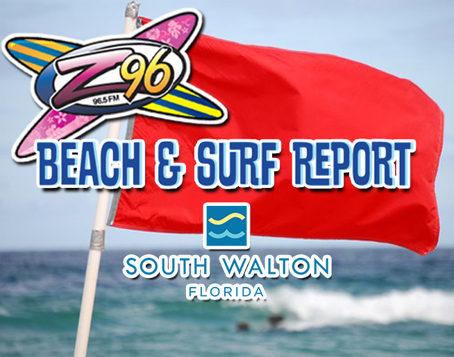Rip Current Safety Information