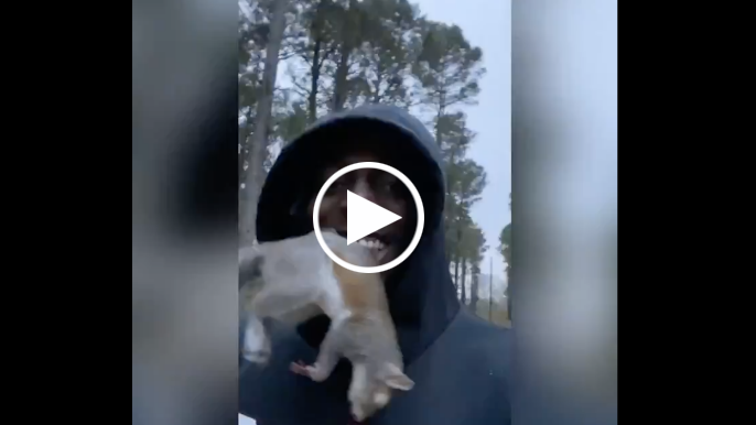 Javon Kinlaw shares wild IG video with squirrel in his mouth