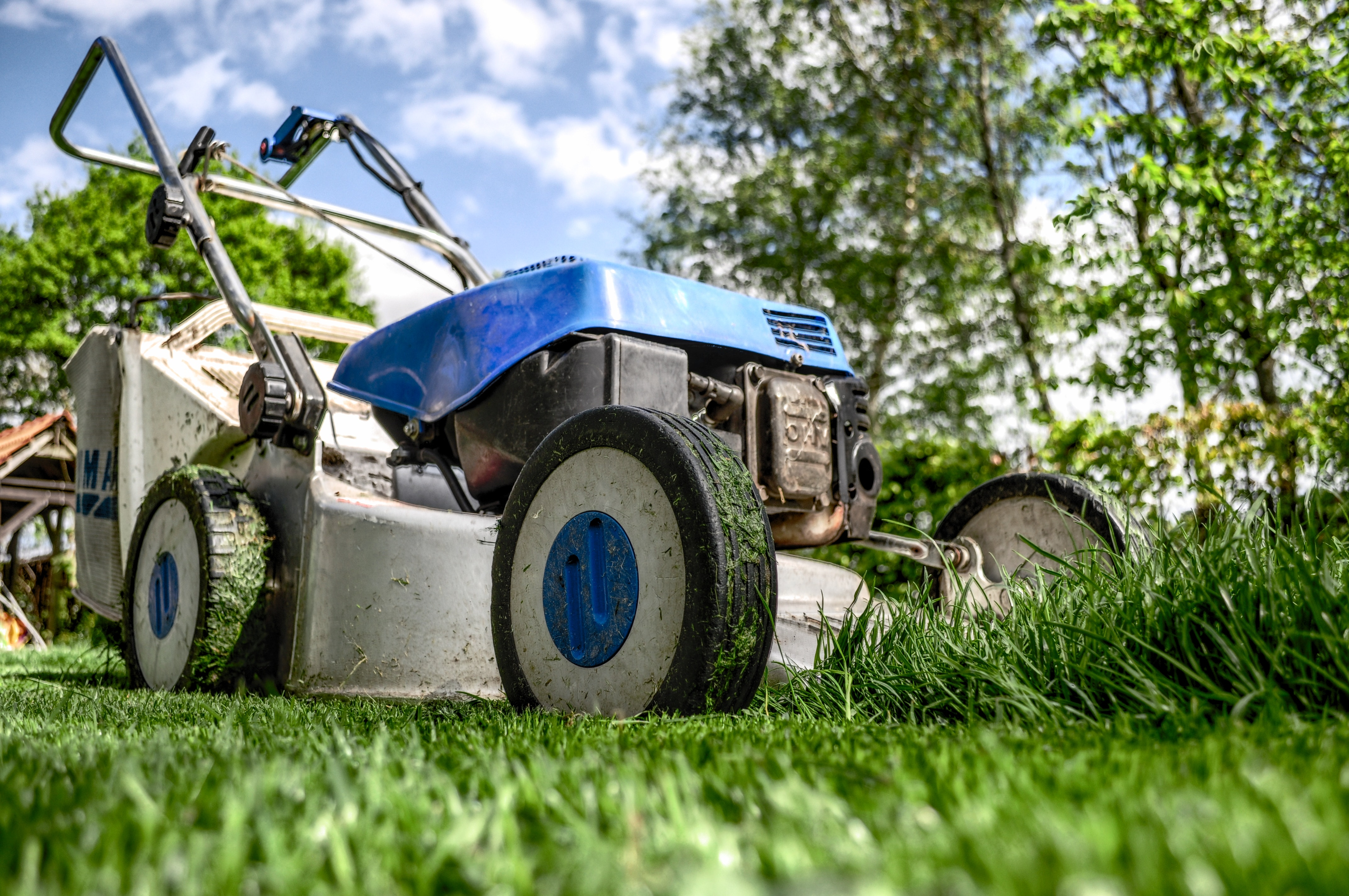 A Woman Tries to Stop an Out-of-Control Lawn Mower . . . with a Stick