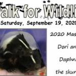 Join WOGB for the Walk for Wildlife at the Wildlife Sanctuary September 19th.