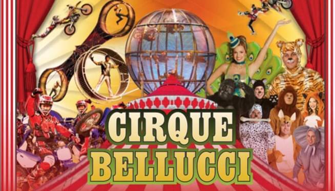 Cirque Belucci