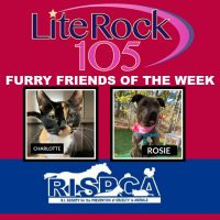 Meet Charlotte and Rosie, our FURRY FRIENDS of the WEEK! (11/19/19)