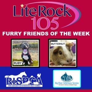 Meet Lulu and Butternut, our FURRY FRIENDS of the WEEK! (2/10/20)