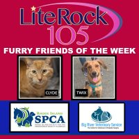 Meet Clyde & Twix, our FURRY FRIENDS of the WEEK! (3/9/20)