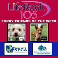 Meet Molly and Osito, our FURRY FRIENDS of the WEEK (3/18/20)