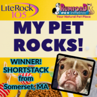 Congrats to SHORTSTACK, our MY PET ROCKS 2020 WINNER!
