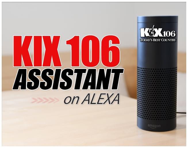 KIX 106 Assistant