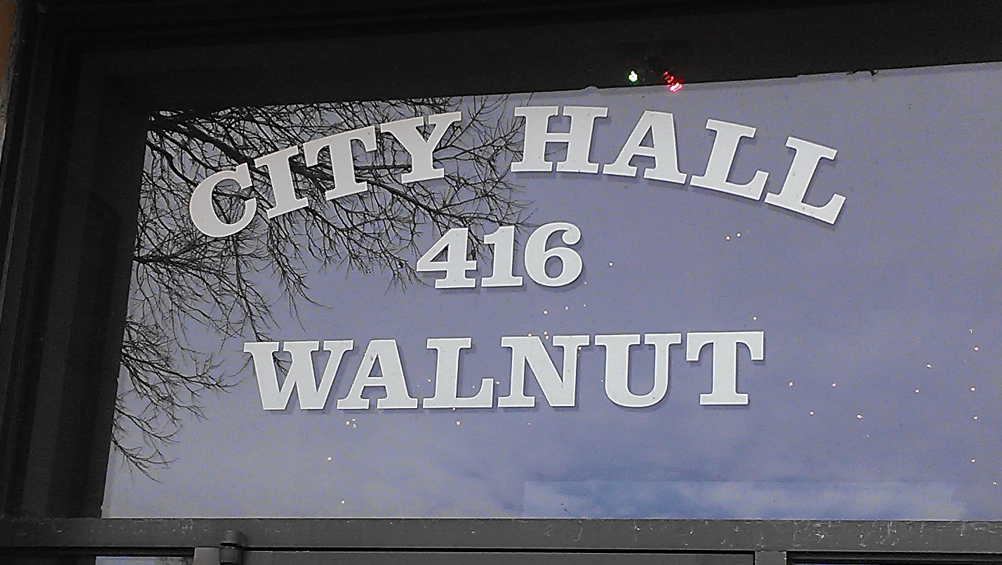 Yankton Municipal Election