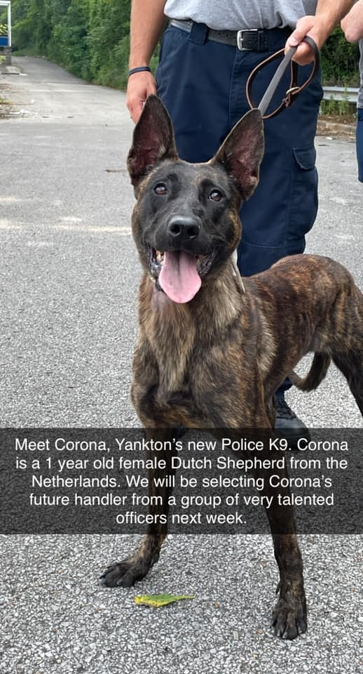 Yankton Welcomes New K-9 Officer