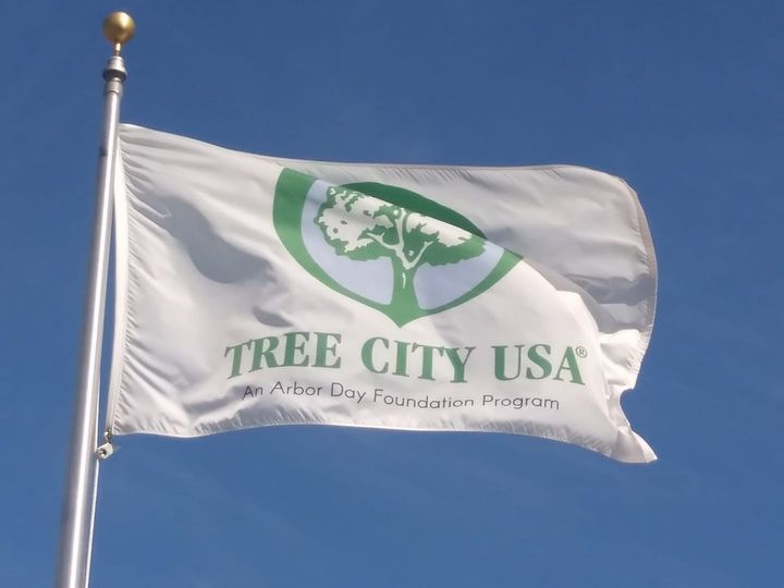Proclamation Marks Arbor Day In Pierre