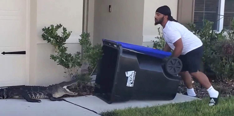 Florida man captures alligator in garbage bin