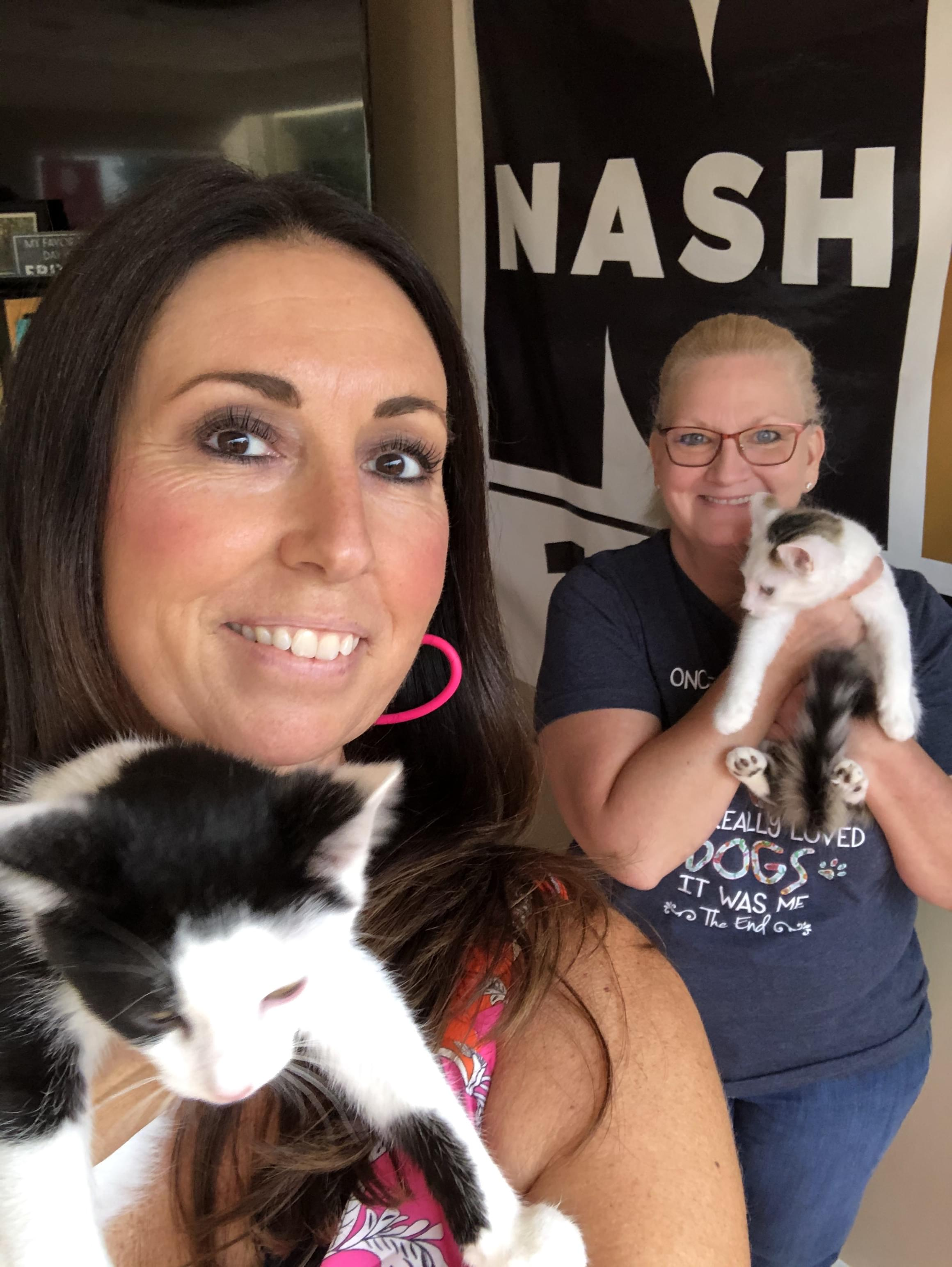 Pets & Paws: Meet a couple of cute kitties this week