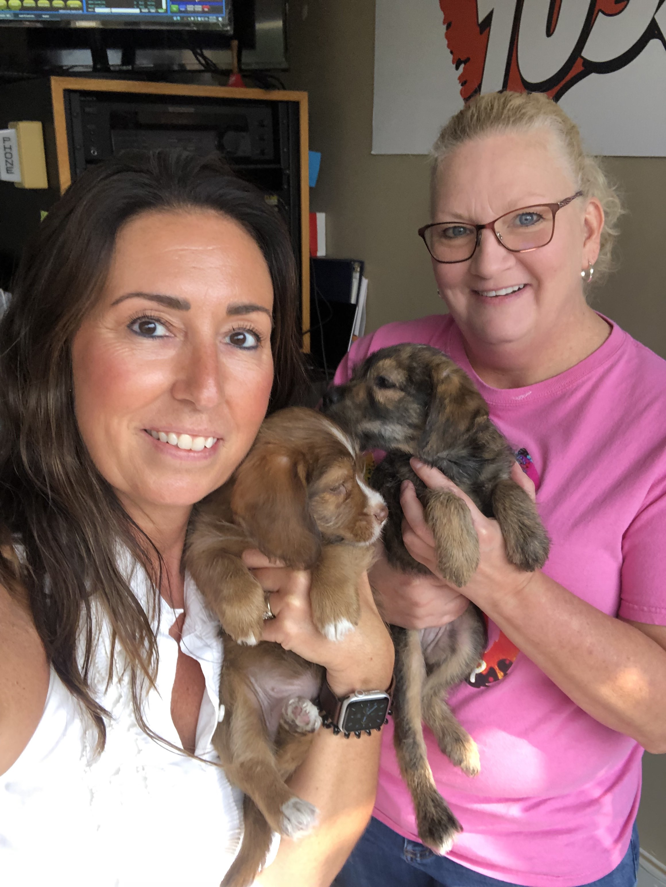 PETS & PAWS: This week we meet a couple of cute puppies